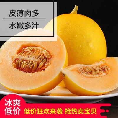 福建省漳州市平和县民勤蜜瓜 2斤以上