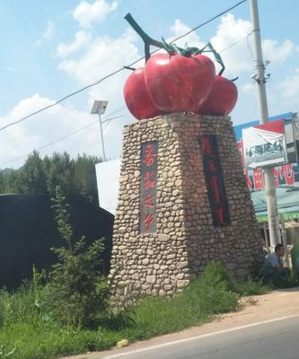 内蒙古自治区赤峰市喀喇沁旗大红硬果 不打冷 大红 弧二以上