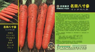 上海闵行区三红胡萝卜种子