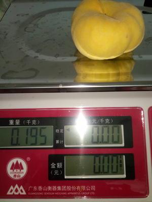 这是一张关于黄蟠桃 3-5两的产品图片