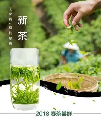 重庆渝中区炒青茶 礼盒装 特级