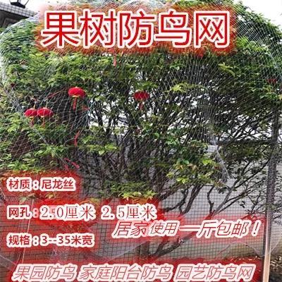 江苏省宿迁市沭阳县防鸟网