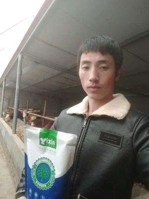 河南省郑州市金水区牛羊饲料