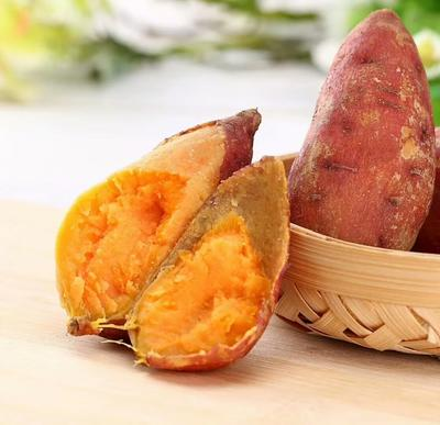 广西壮族自治区钦州市灵山县黄心红薯 红皮 3两以上