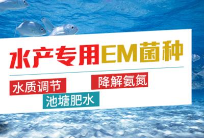 河南省郑州市金水区水产EM菌培养基