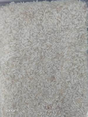 河南省信阳市固始县籼米 有机大米 早稻 二等品