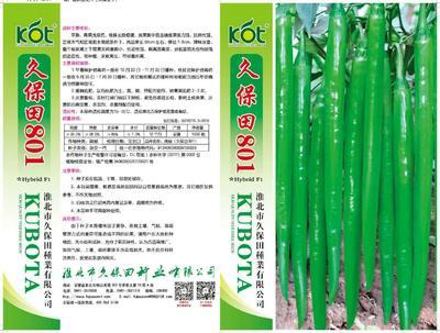 安徽省淮北市相山区线椒种子 95%以上 杂交种