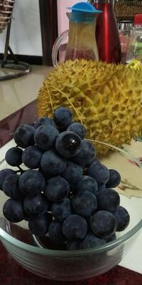 这是一张关于藤稔葡萄 5%以下 1次果 1.5- 2斤的产品图片