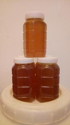 这是一张关于土蜂蜜 塑料瓶装 100% 2年以上的产品图片