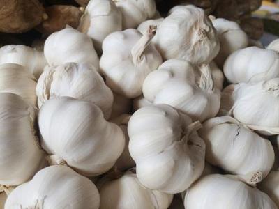 陕西省渭南市大荔县白皮大蒜 4.5-5.0cm 多瓣蒜