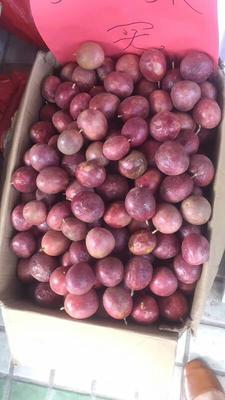 广西壮族自治区南宁市江南区紫红色百香果 50 - 60克