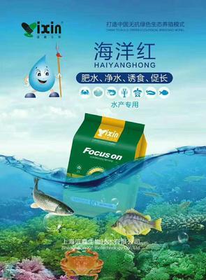 河南省郑州市金水区小龙虾苗