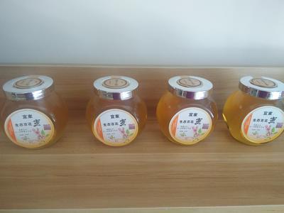河南省三门峡市卢氏县荆条蜜 玻璃瓶装 98% 2年