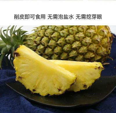 广西壮族自治区崇左市扶绥县台湾凤梨 1.5 - 2斤