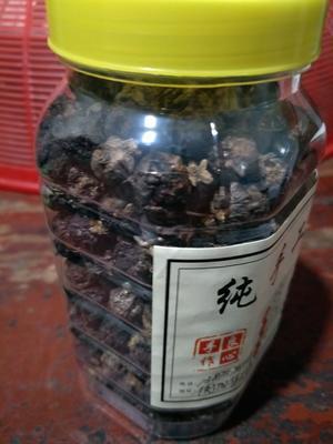 湖南省衡阳市衡阳县野牛坪枇杷 0.4两以下
