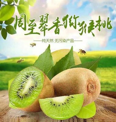 陕西省西安市周至县翠香猕猴桃 100~120克
