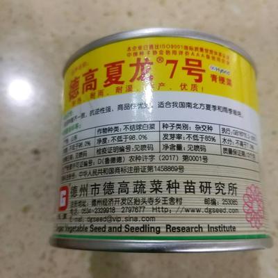 山东省临沂市兰山区油菜籽种子 德高夏龙7号