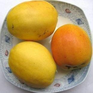 云南省昆明市五华区酸木瓜 0.5 - 1斤
