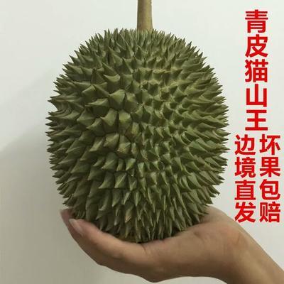 广西壮族自治区崇左市凭祥市猫山王榴莲 60 - 70%以上 2 - 3公斤
