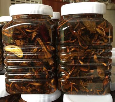 云南省普洱市宁洱哈尼族彝族自治县野生菌罐头 18-24个月