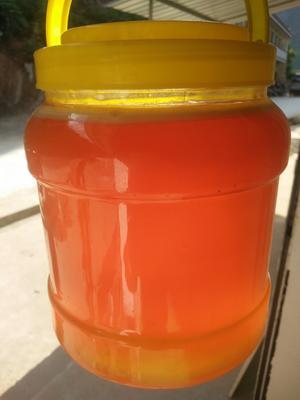 甘肃省陇南市两当县土蜂蜜 塑料瓶装 90%以上 2年