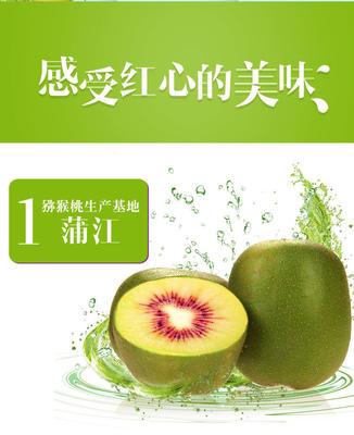 广东省潮州市湘桥区蒲江猕猴桃 120克以上