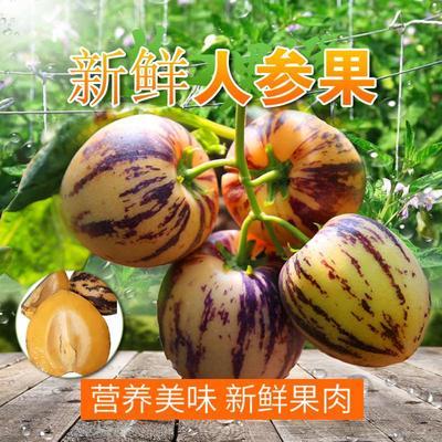 广东省潮州市湘桥区圆果 4 - 5两以上
