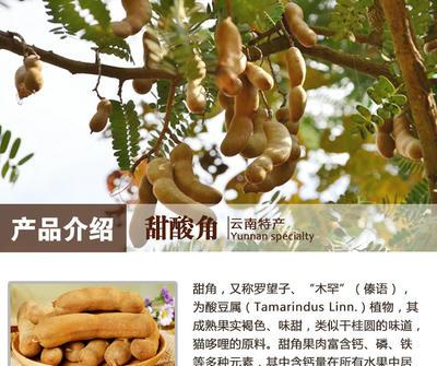 广东省潮州市湘桥区甜角