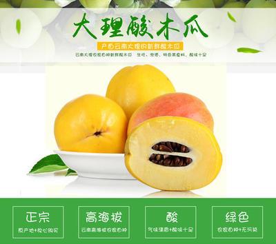 广东省潮州市湘桥区酸木瓜 0.5 - 1斤