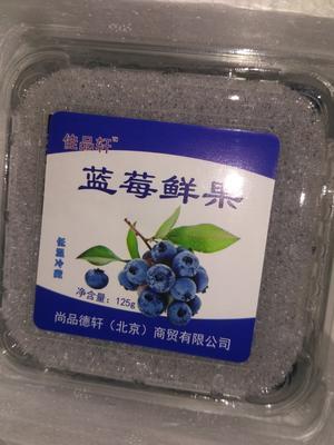 四川省凉山彝族自治州西昌市兔眼蓝莓 8 - 10mm以上 鲜果