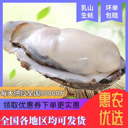 山东威海乳山牡蛎生蚝海蛎子生吃带壳鲜活