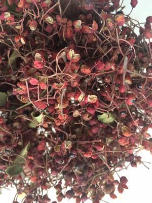 这是一张关于大红袍花椒 干花椒 特级的产品图片
