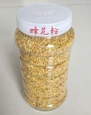 山东东营混合蜂花粉 24个月以上
