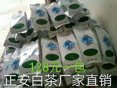 贵州遵义正安白茶 袋装 恒温长期保存 特级