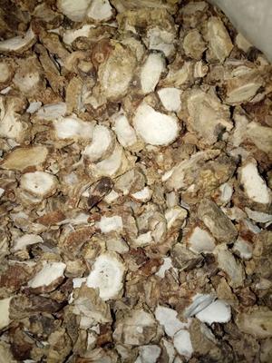 广东珠海老姜片 散装 3-6个月
