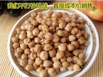广西壮族自治区玉林市玉州区鹰嘴豆
