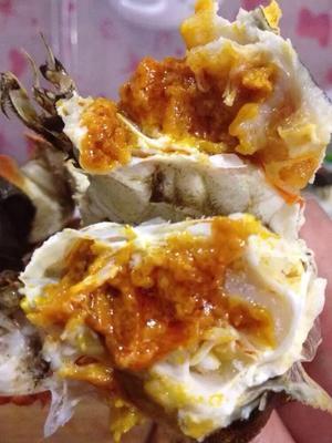江苏泰州蟹肉