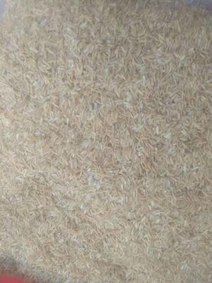 江西抚州黎川县稻壳 碎米