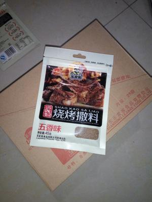 河南郑州烧烤腌料