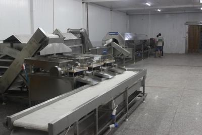 山东潍坊鹌鹑蛋加工流水线