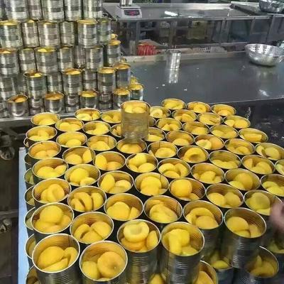 安徽宿州黄桃罐头 18-24个月