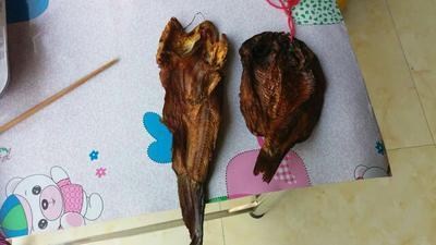 贵州毕节野生干鱼 3-6个月