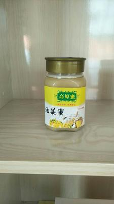 青海海北油菜蜜 塑料瓶装 98% 2年以上