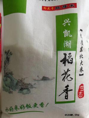 这是一张关于胚芽米 有机大米 晚稻 一等品的产品图片