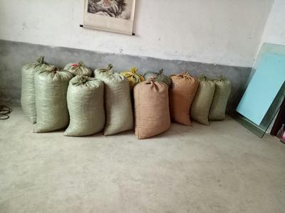 湖北襄樊花生果 袋装 3-6个月