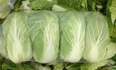 湖北省咸宁市嘉鱼县阳春白菜 3~6斤 净菜