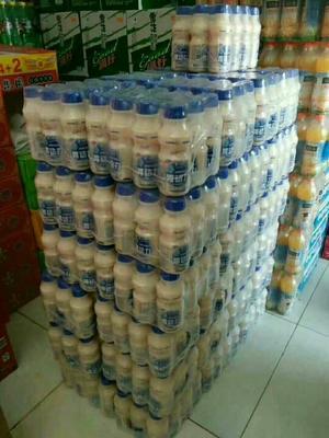 山东枣庄乳酸菌饮料 塑料瓶 6-12个月