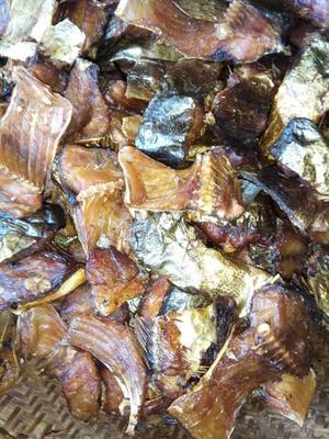湖南怀化腊鱼 人工养殖 0.5龙8国际官网官方网站以下