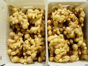 这是一张关于沂水大姜 带土 4两以上的产品图片