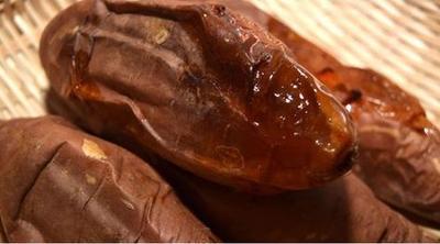 河南新乡烟薯25 黄皮 4两以上